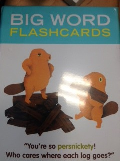 Big Word Flash Cards by Knock Knock